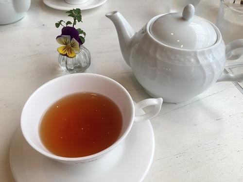 ワイズティー・紅茶